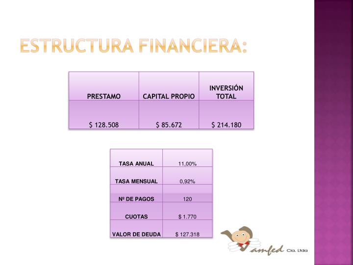 Estructura financiera: