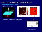 local optical fields nanoparticles2