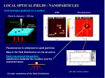 local optical fields nanoparticles3