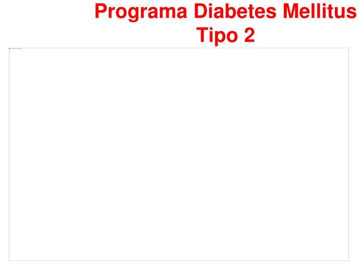 Programa Diabetes Mellitus