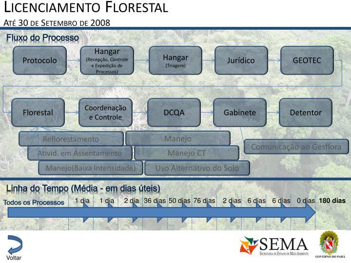 Licenciamento Florestal