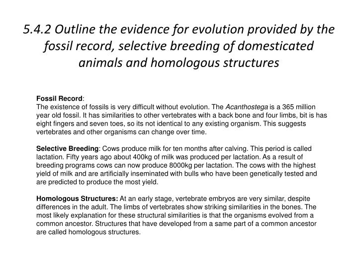 5.4.2 Outline the evidence for evolution provided by the fossil record, selective breeding of domest...