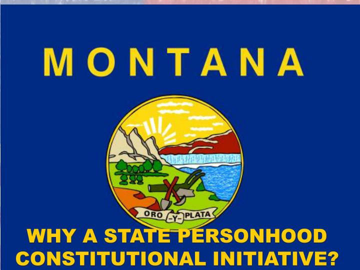 WHY A STATE PERSONHOOD CONSTITUTIONAL INITIATIVE?
