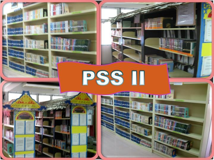PSS II