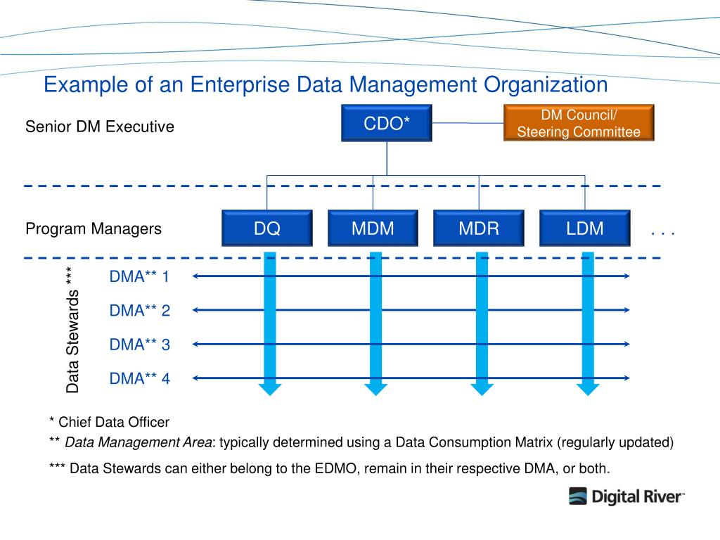Example of an Enterprise Data Management Organization