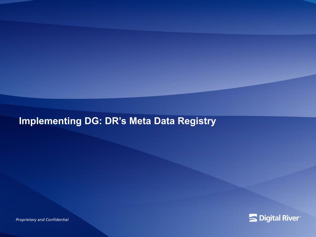 Implementing DG: DR's Meta Data Registry