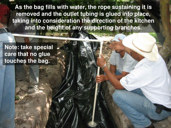 As the bag fills with water, the rope sustaining it is removed and the outlet tubing is glued into place, taking into consideration the direction of the kitchen and the height of any supporting branches.