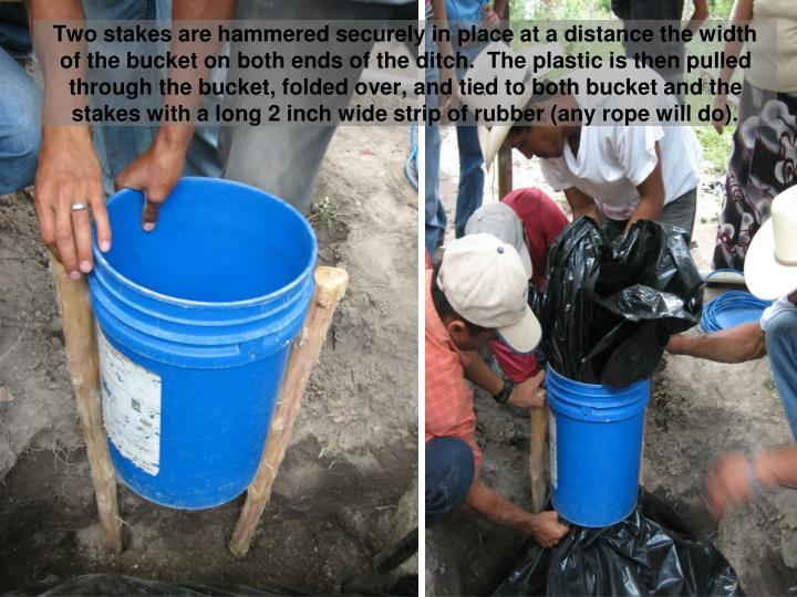 Two stakes are hammered securely in place at a distance the width of the bucket on both ends of the ditch.  The plastic is then pulled through the bucket, folded over, and tied to both bucket and the stakes with a long 2 inch wide strip of rubber (any rope will do).