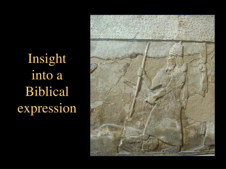 Insight into a Biblical expression