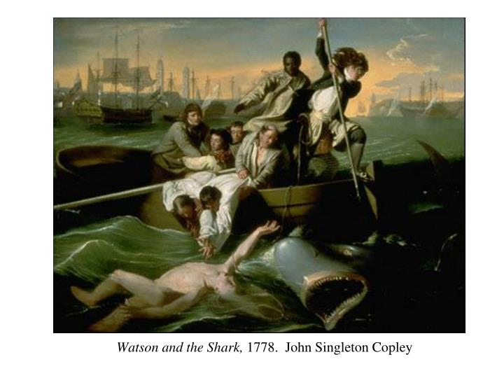 watson and the shark by john singleton essay John singleton copley's interpretation of a horrifying disaster in brooke watson and the shark stands out as a romanticised horror painting watson and the shark, an oil on canvas painting, was completed in 1778 and belongs to the '18th century american political' period.