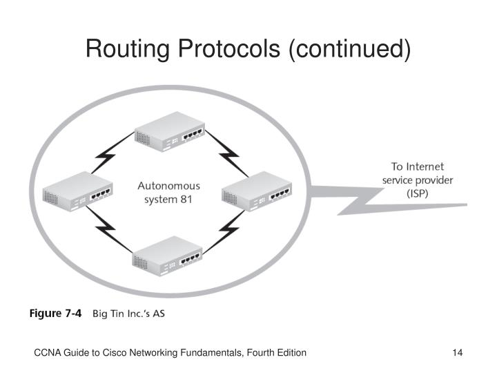Routing Protocols (continued)