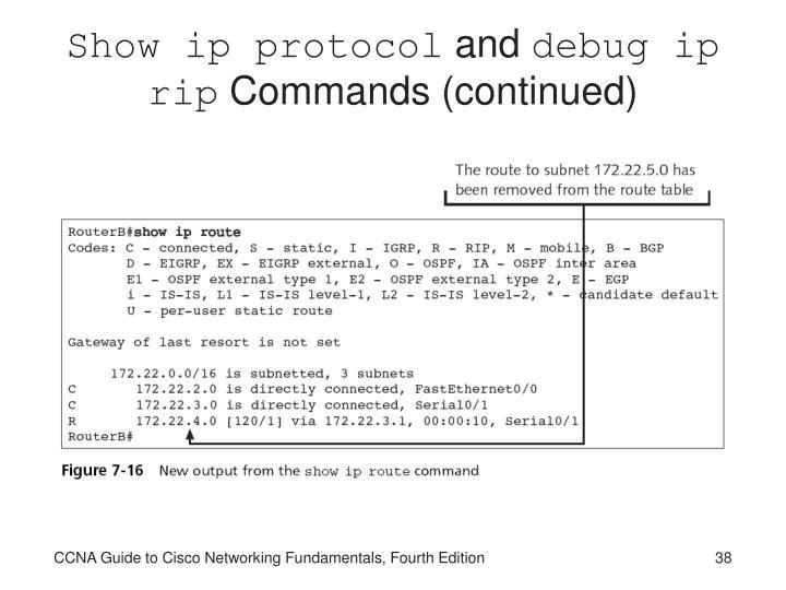 Show ip protocol