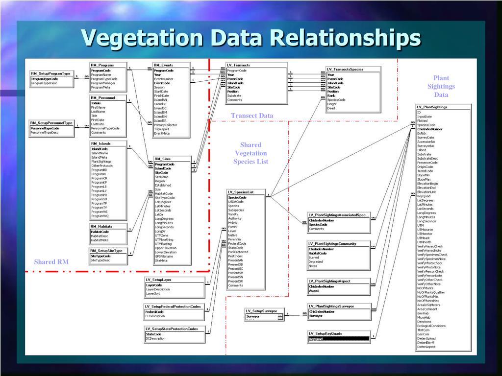 Vegetation Data Relationships
