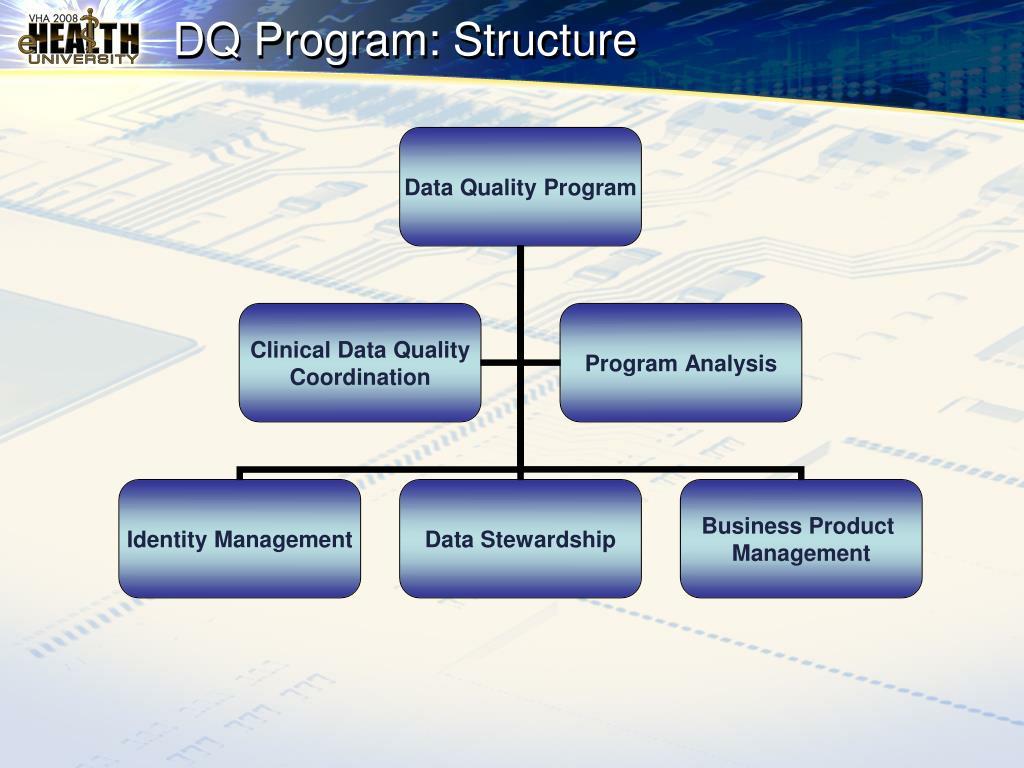 DQ Program: Structure