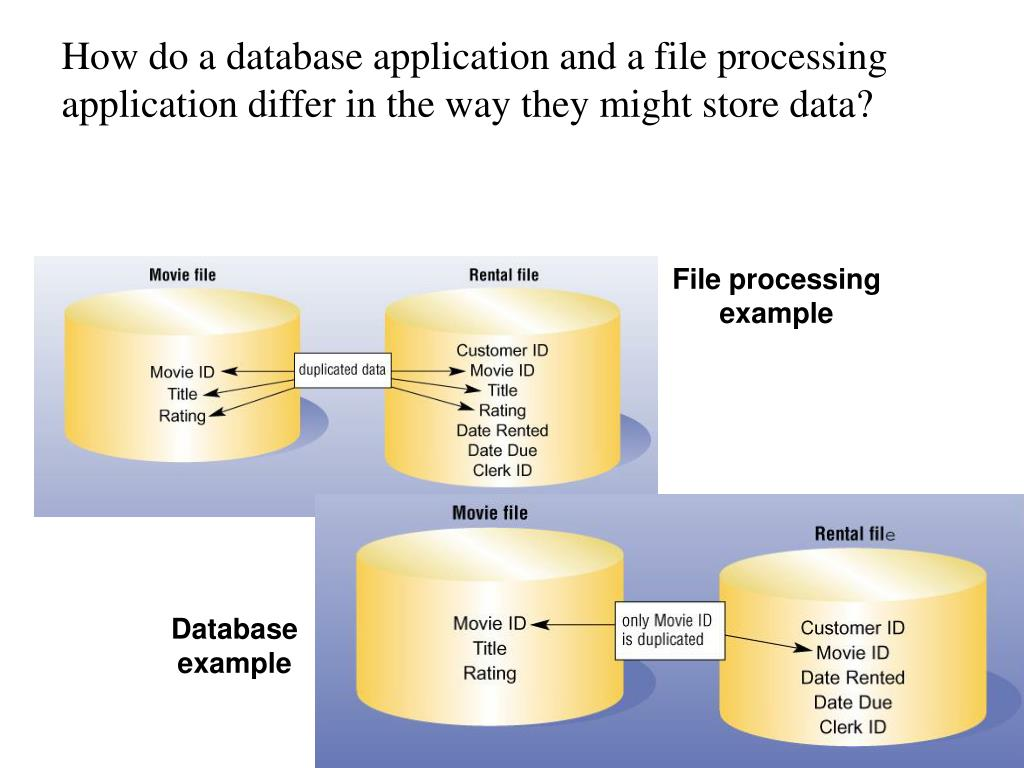 How do a database application and a file processing application differ in the way they might store data?
