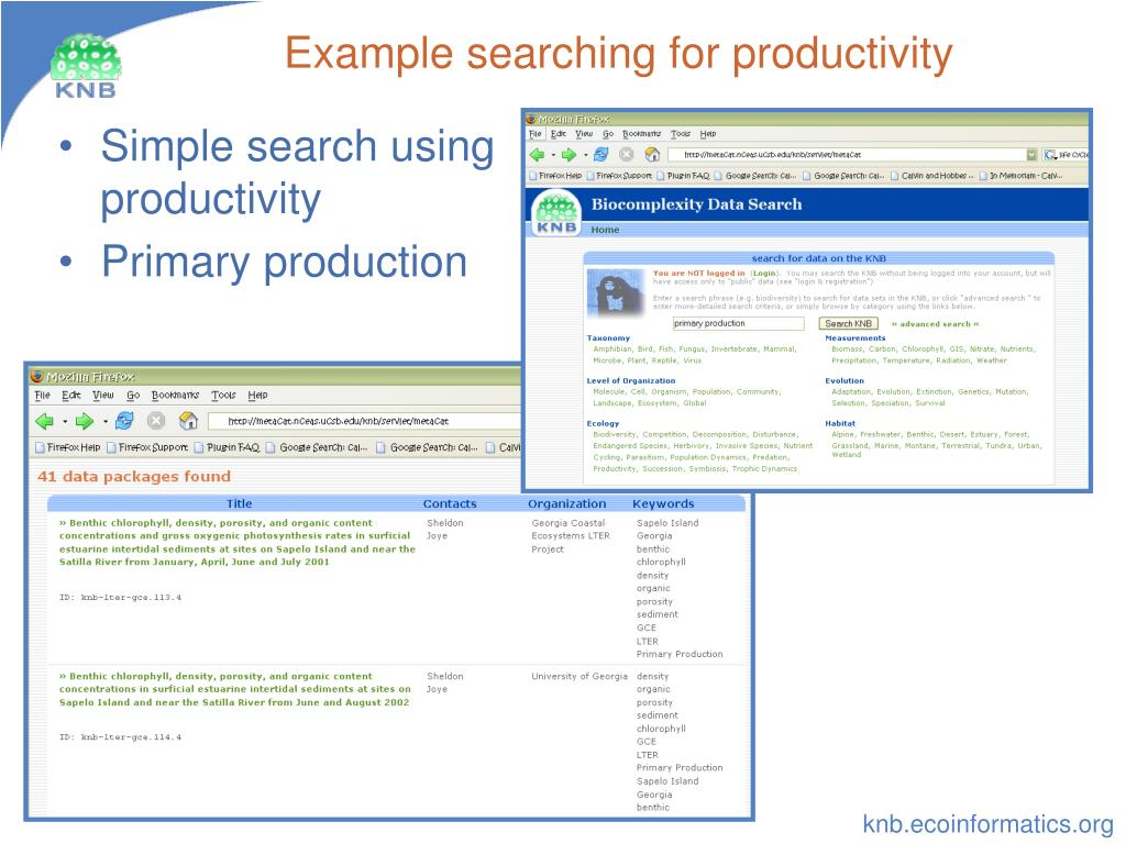 Example searching for productivity