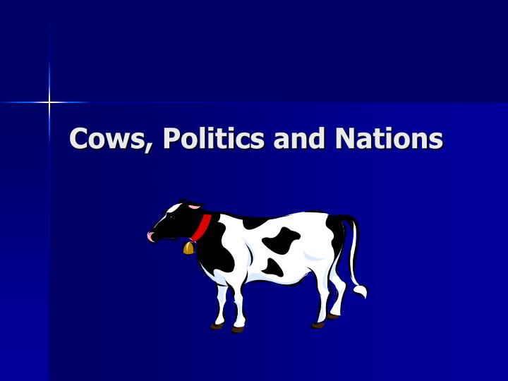 Cows politics and nations