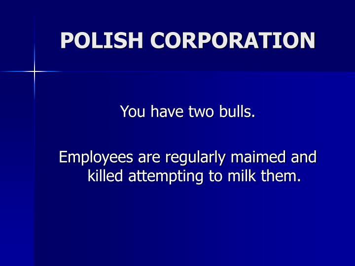 POLISH CORPORATION