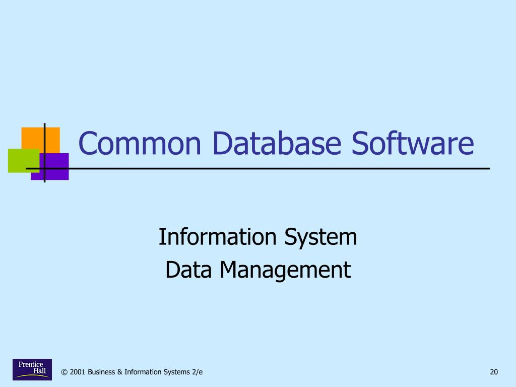 Common Database Software
