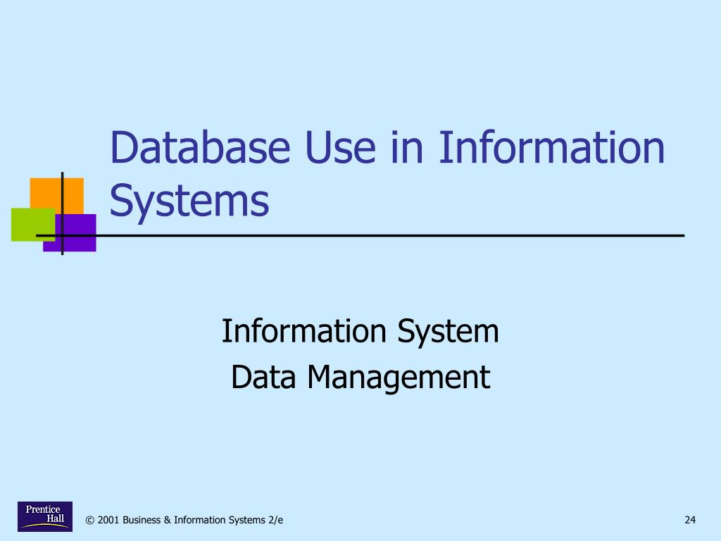 Database Use in Information Systems