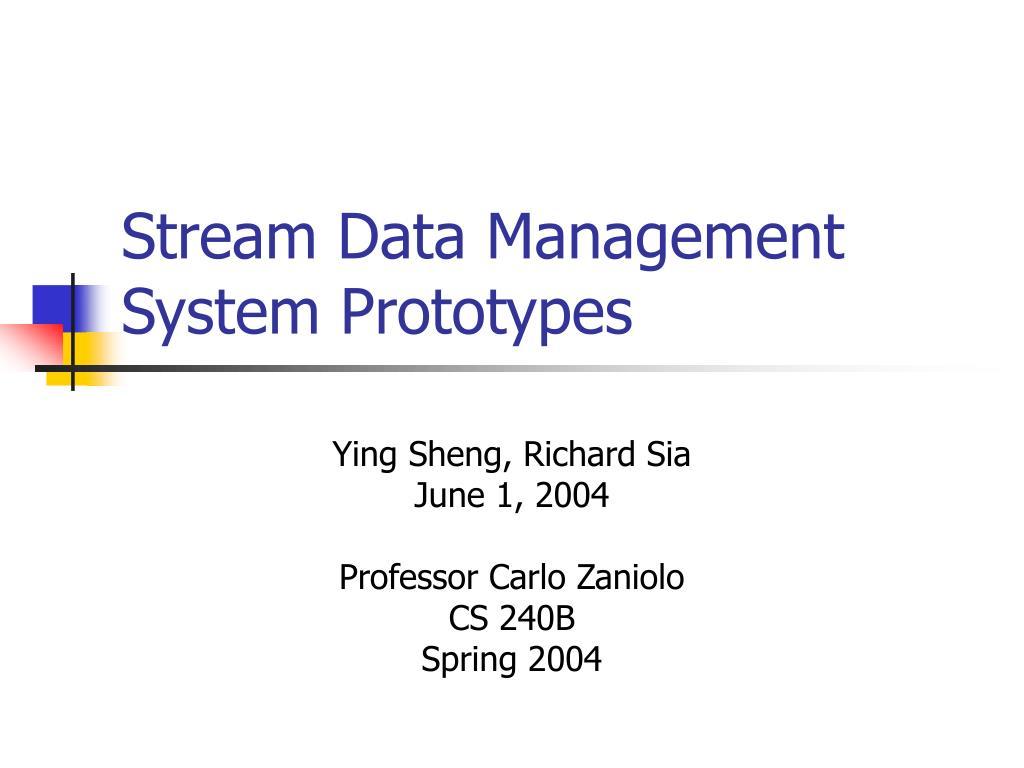 Stream Data Management System Prototypes