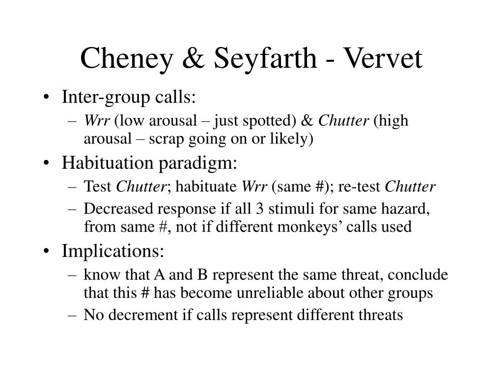 Cheney & Seyfarth - Vervet