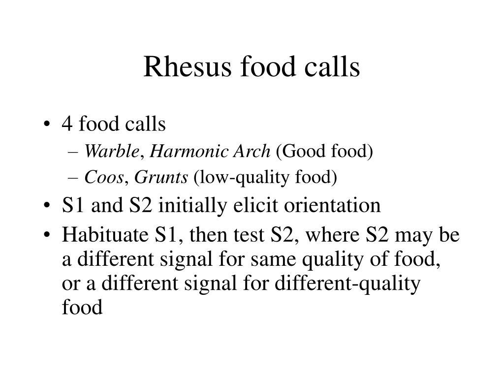 Rhesus food calls