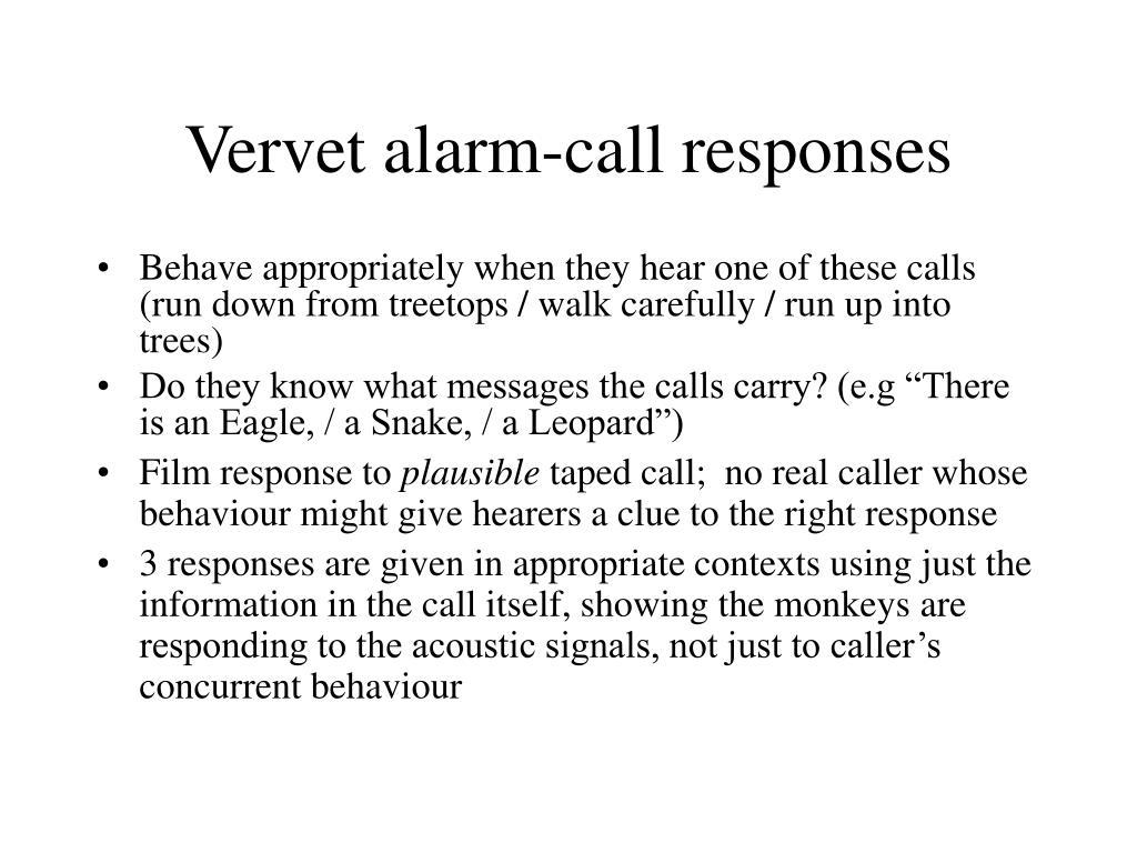Vervet alarm-call responses