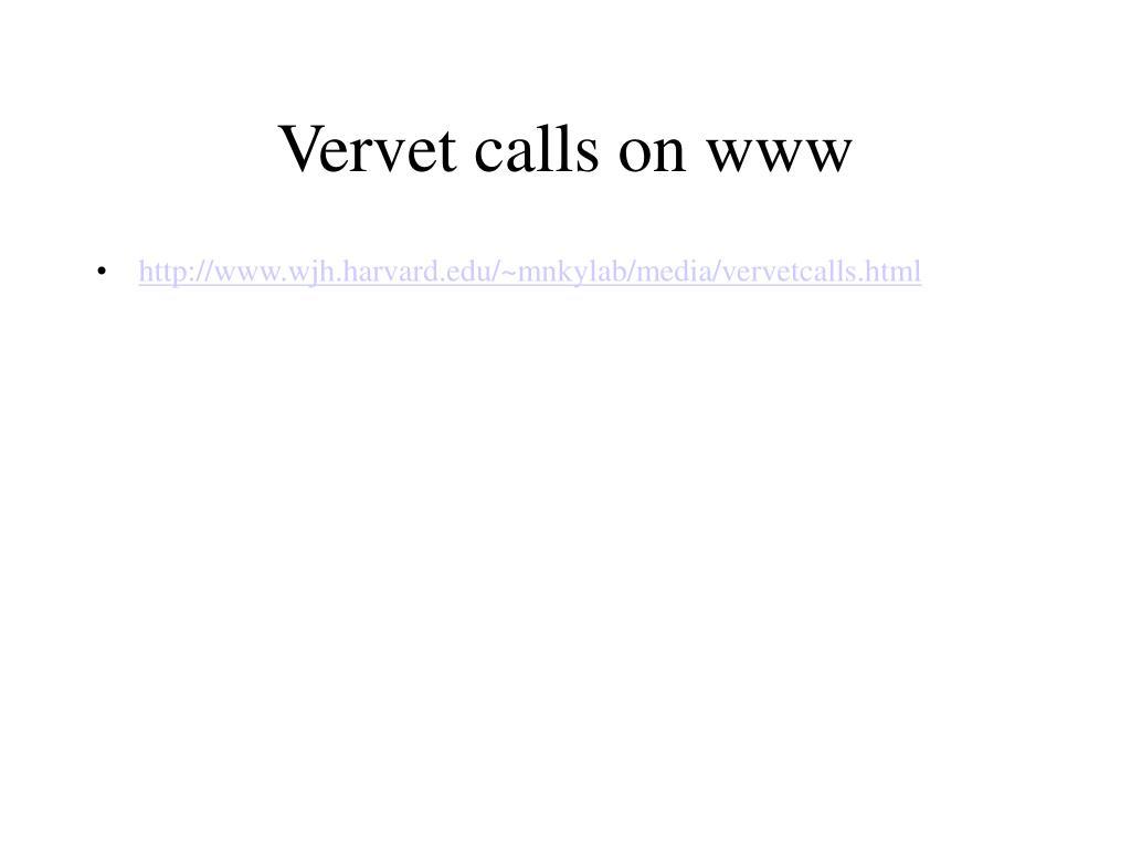 Vervet calls on www