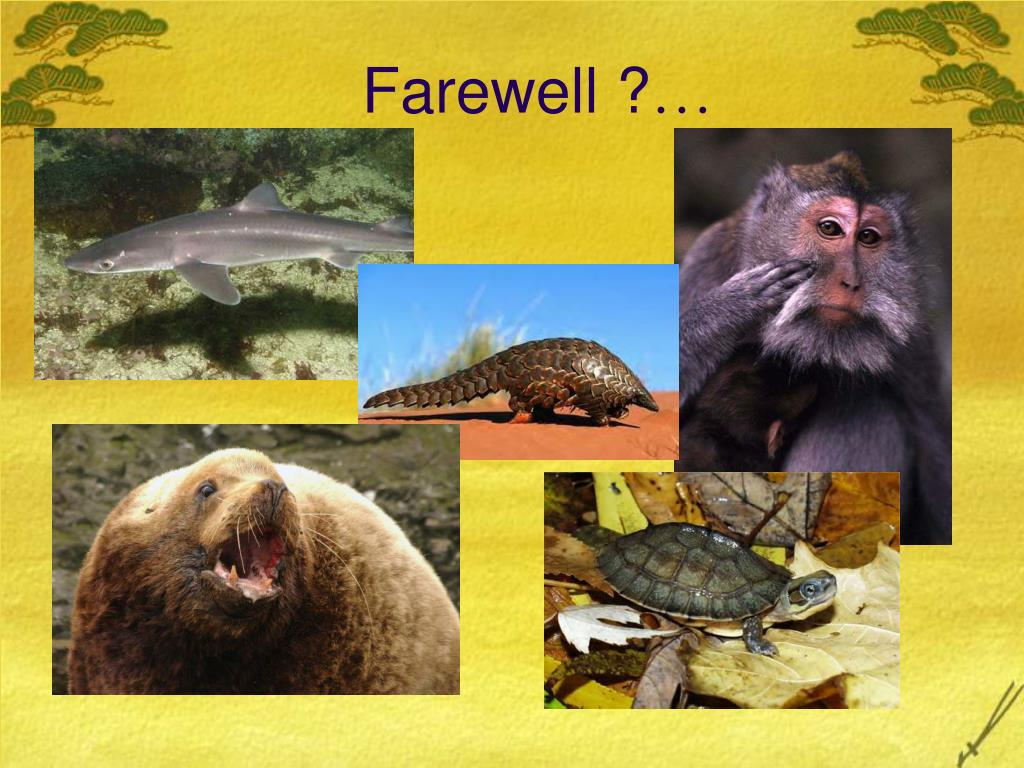 Farewell ?
