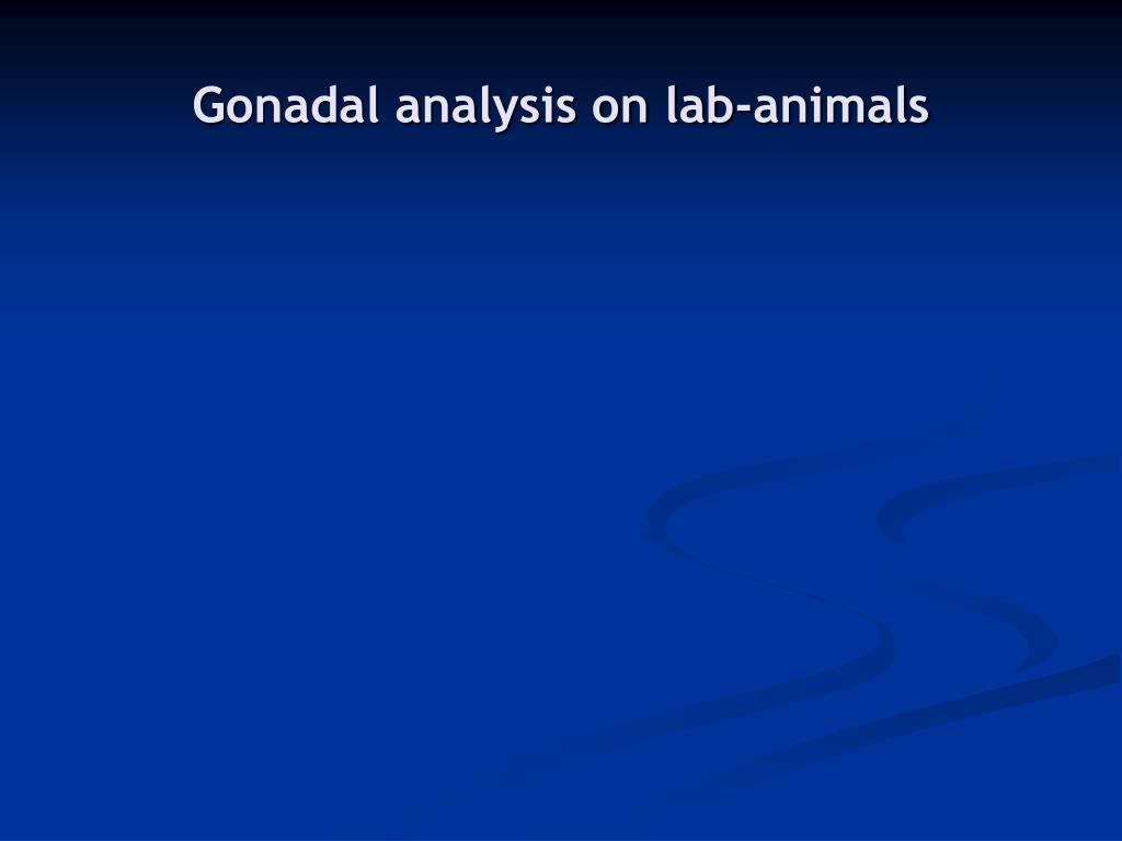 Gonadal analysis on lab-animals