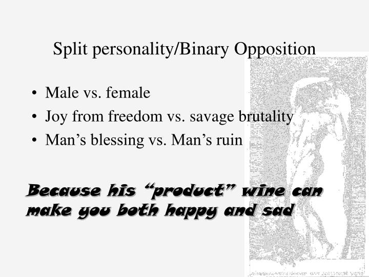 Split personality binary opposition