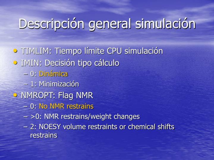 Descripción general simulación