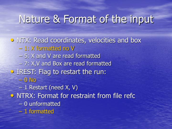Nature & Format of the input