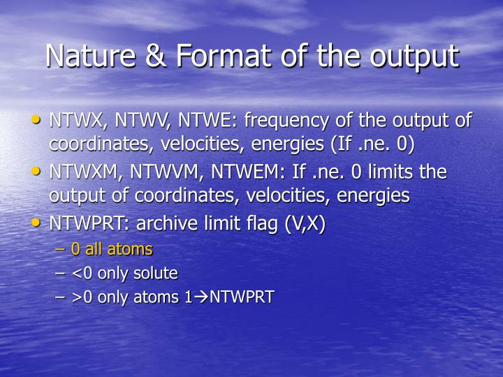 Nature & Format of the output