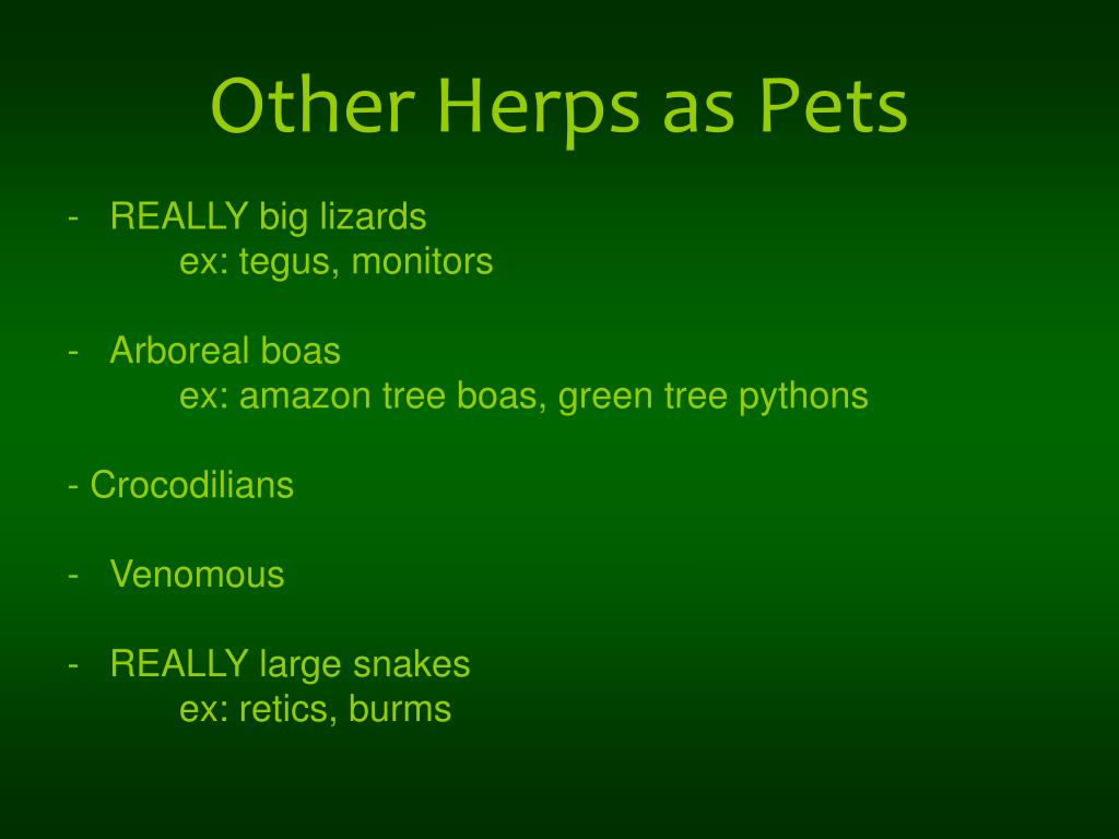 Other Herps as Pets