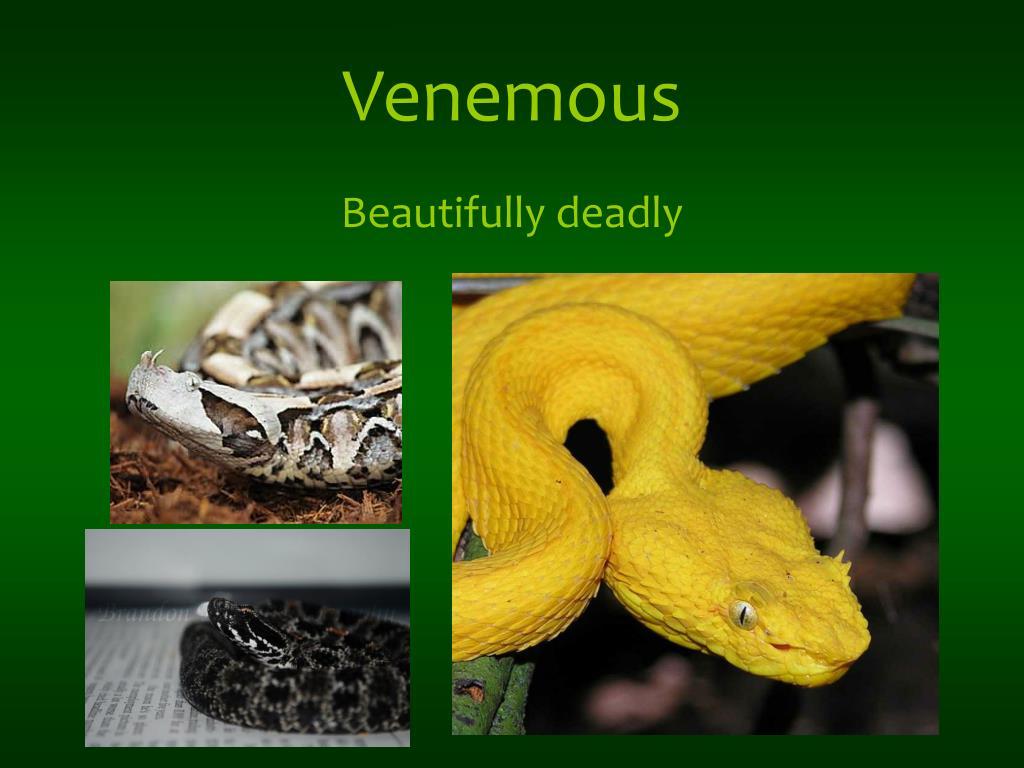 Venemous
