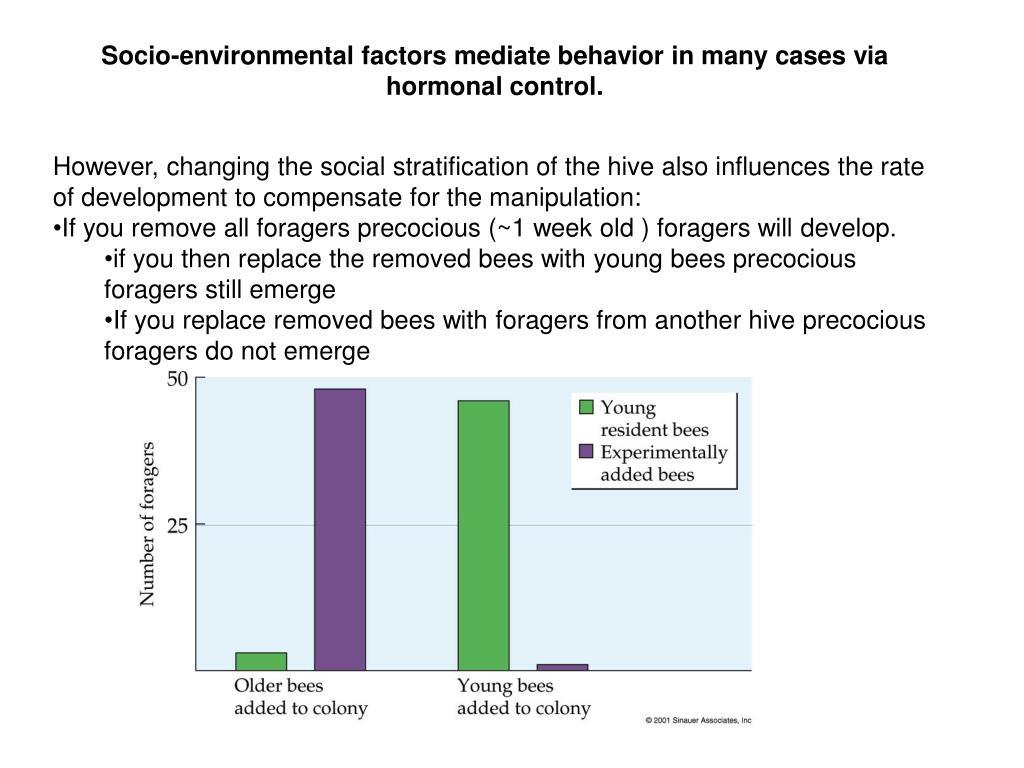 Socio-environmental factors mediate behavior in many cases via hormonal control.