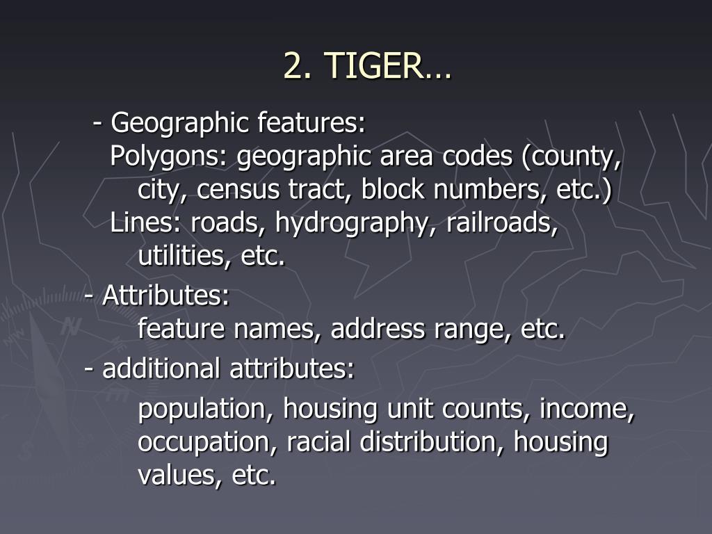 2. TIGER…