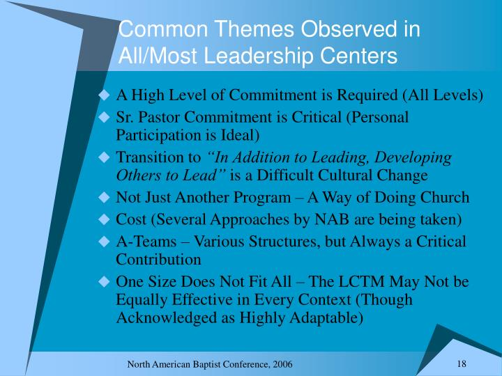 Common Themes Observed in All/Most Leadership Centers