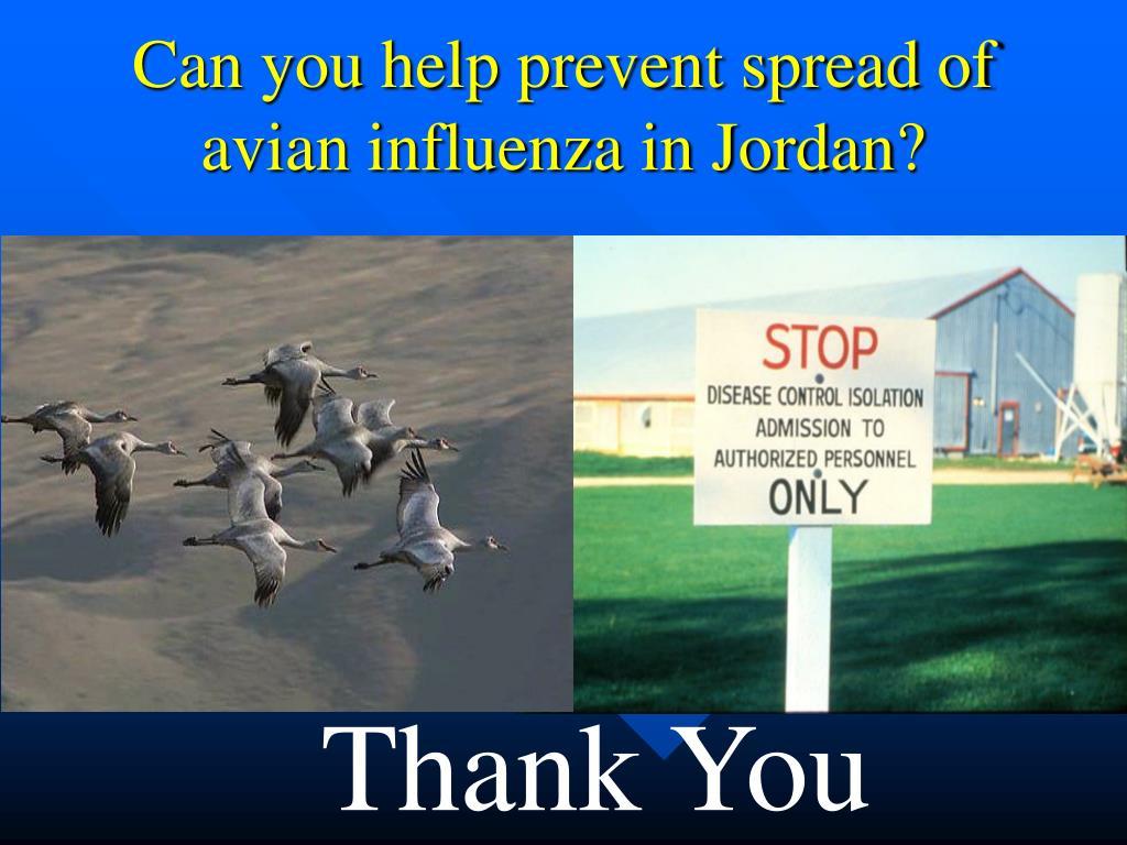 Can you help prevent spread of avian influenza in Jordan?
