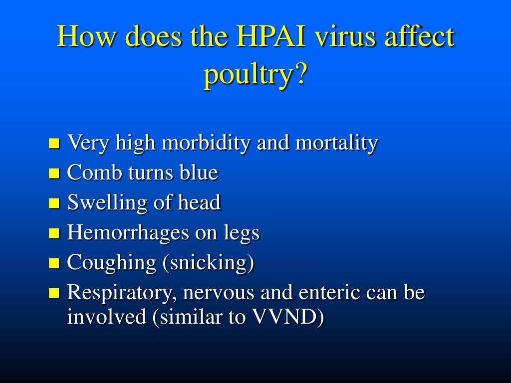 How does the HPAI virus affect poultry?