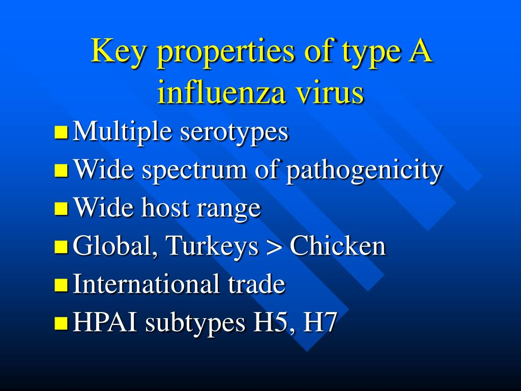 Key properties of type A influenza virus