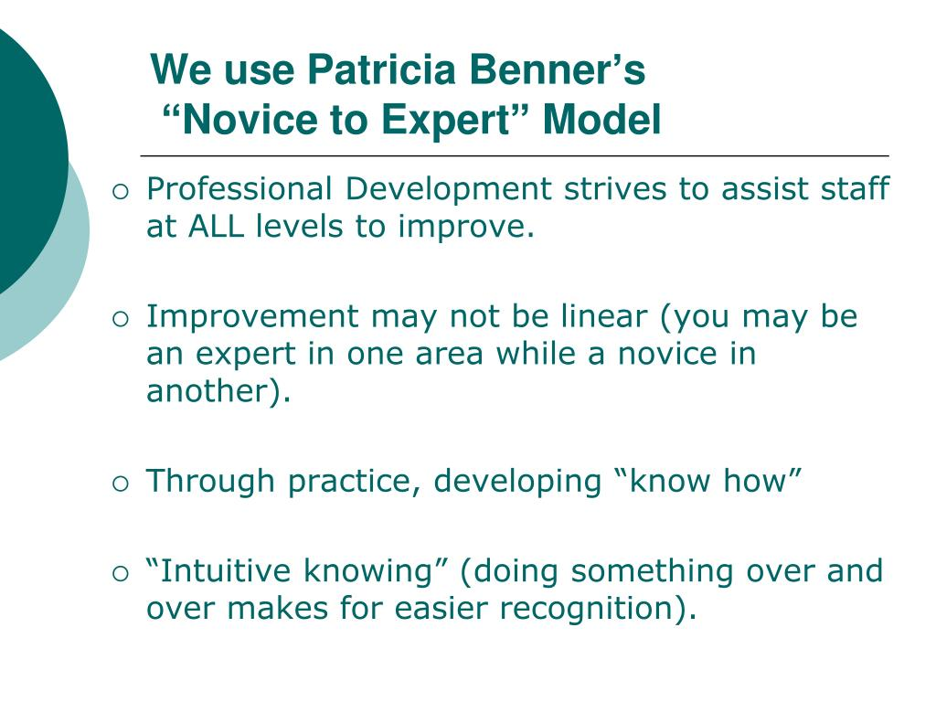 We use Patricia Benner's