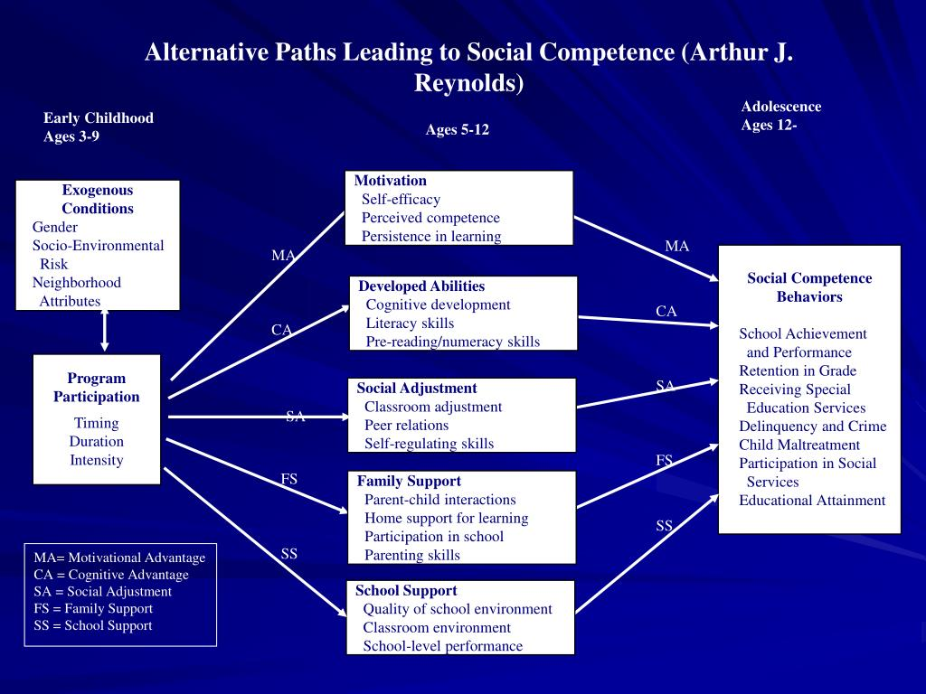 Alternative Paths Leading to Social Competence (Arthur J. Reynolds)