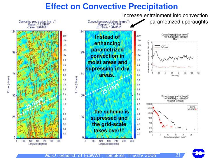 Effect on Convective Precipitation