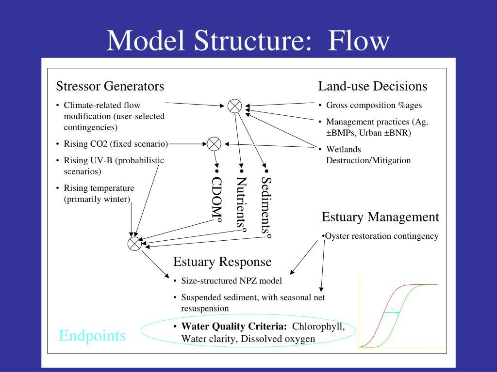 Model Structure:  Flow