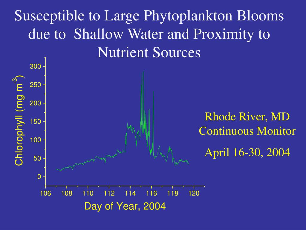 Susceptible to Large Phytoplankton Blooms due to  Shallow Water and Proximity to Nutrient Sources