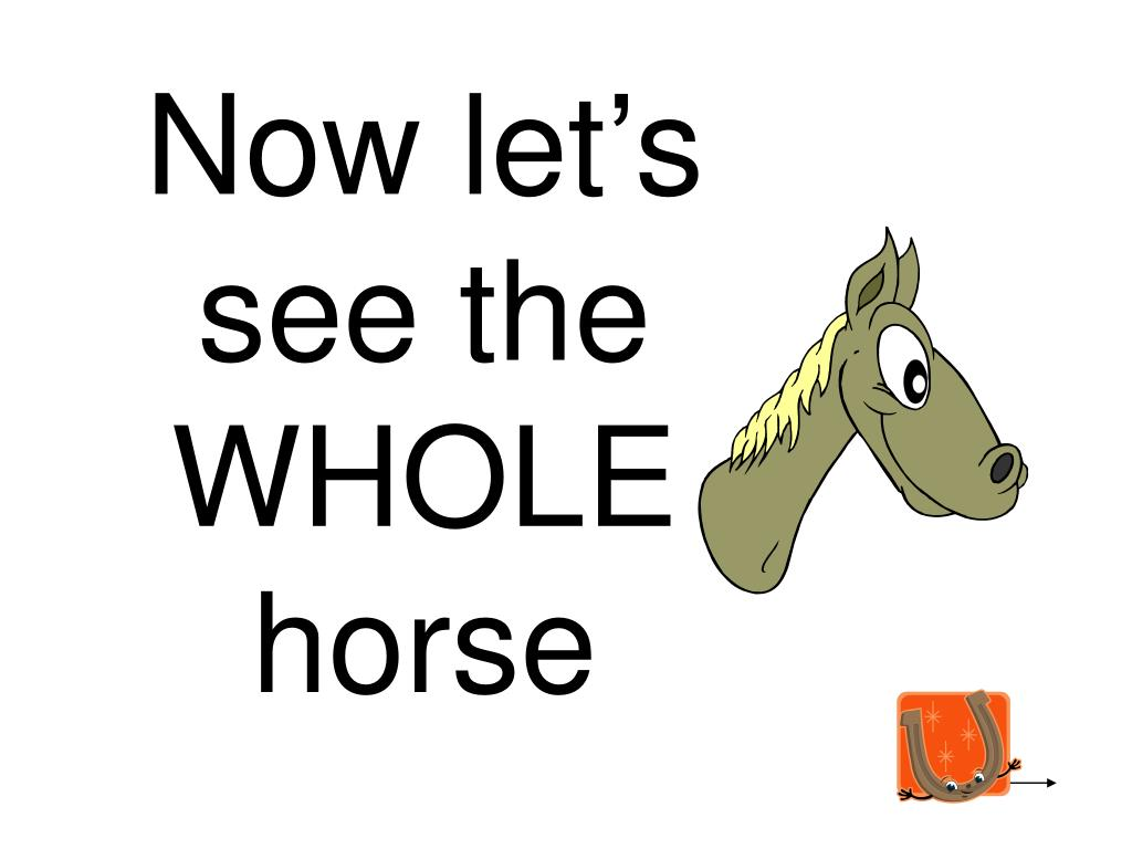 Now let's see the WHOLE horse