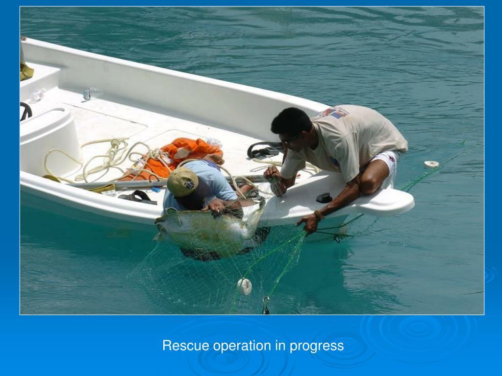 Rescue operation in progress